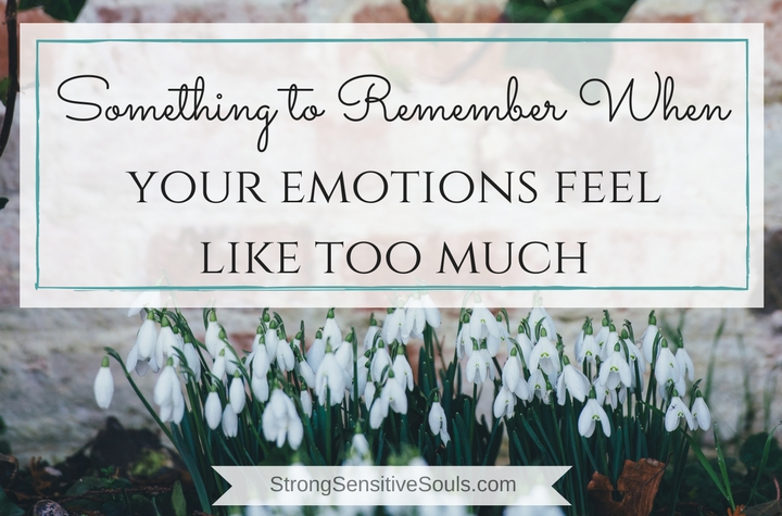 Something to Remember When Your Emotions Feel Like Too Much…