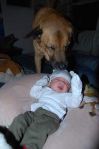 Dog & baby